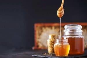 apicoltura come iniziare e allevare api